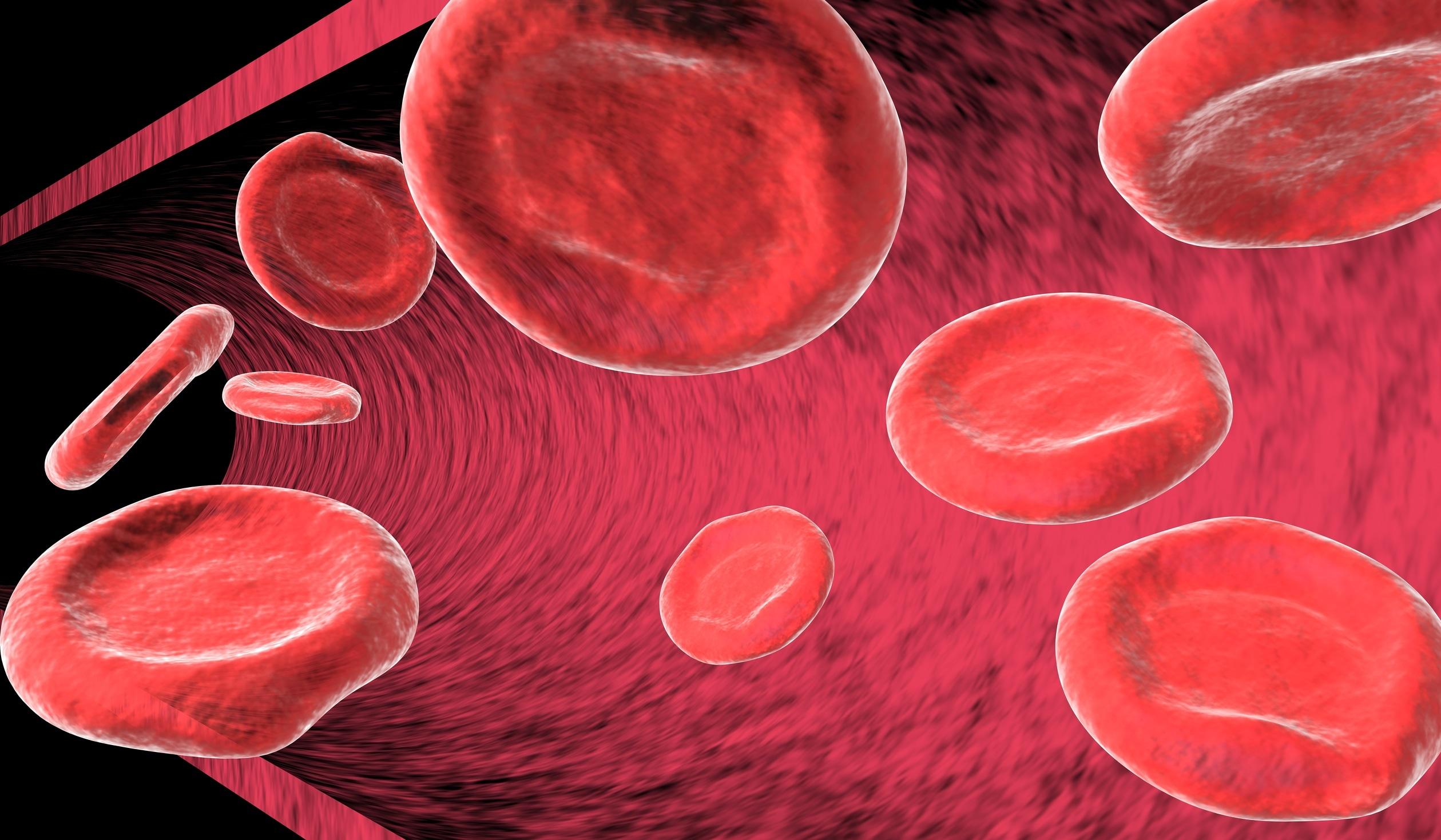 La sangre está compuesta de plaquetas, glóbulos rojos, glóbulos blancos....