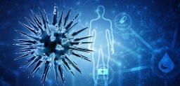 ¿Cómo funciona el sistema inmunitario?